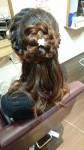 今回はお花のヘアアレンジ&短い髪でのUPスタイル☆