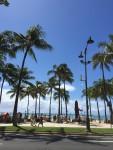 ☆社員旅行&素晴らしい人生☆小松市の美容室でもハワイに行けるんだ!
